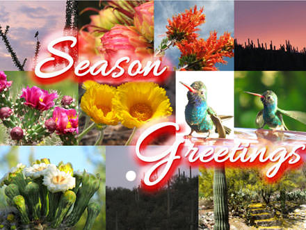 Collage of sights around Tucson with Season Greetings